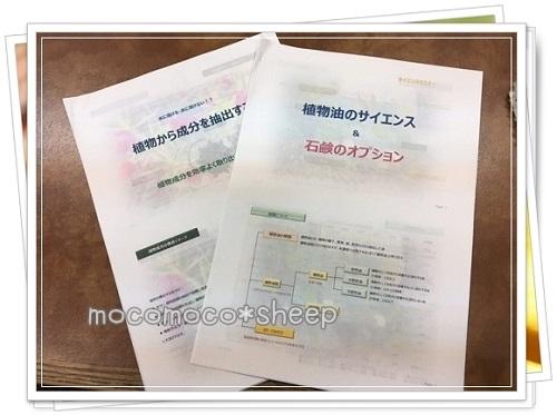 長島塾植物から成分を抽出する・植物油のサイエンス&石けんのオプションテキスト